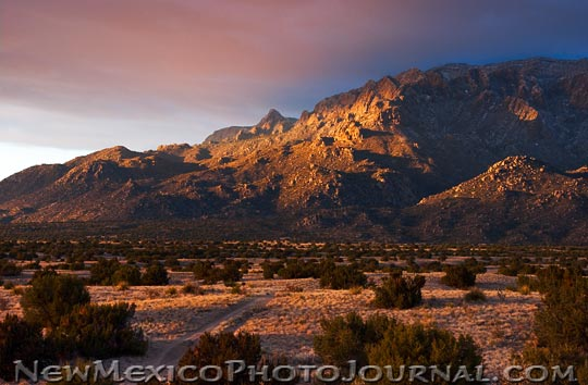 Sandia foothills, late afternoon