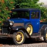 Model T and Trumpet Vine