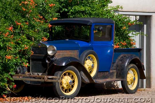 Model T and Trumpet Vine