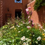 Ghost Ranch Courtyard