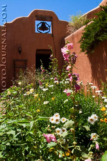 flowers in a courtyard with a bell tower