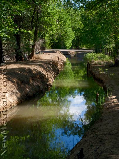 an acequia reflects trees and sky
