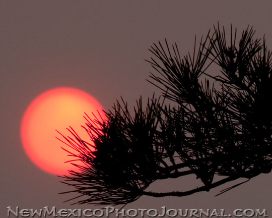 Setting Sun Obscured by Smoke from the Wallow Fire