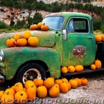 Truck and Pumpkins
