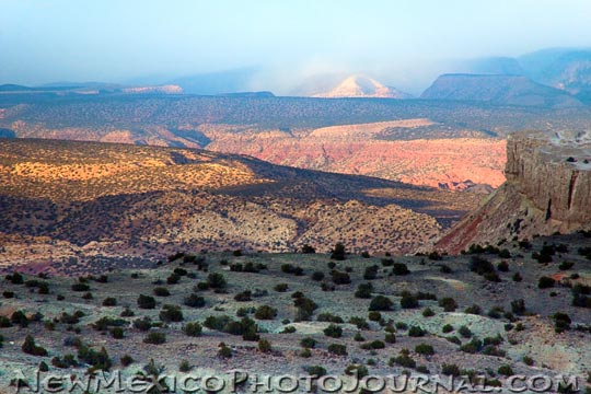 The late afternoon sun falls on part of the Ojito Wilderness.