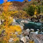 Fall Comes to the Rio Grande Gorge
