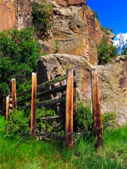 Fogon Canyon Corral