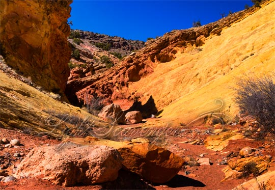 Colorful Box Canyon