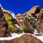 Snow-Covered Boulders