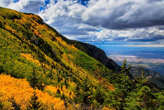 Sandia Mountain Aspens