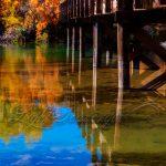 Bridge Over the Rio Grande
