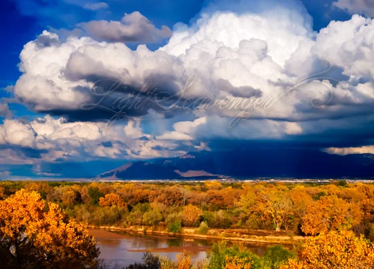 Rio Grande Bosque and Storm