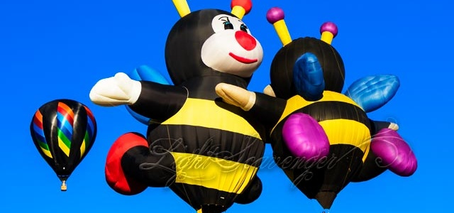 Lilly and Joelly Bee hot air balloons