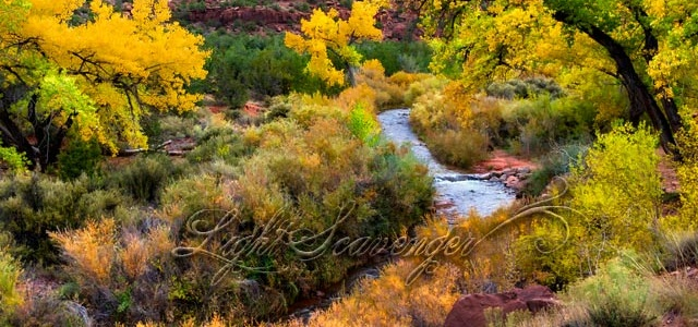 Jemez River in Fall