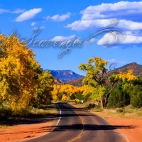 Jemez in Fall: Highway 4