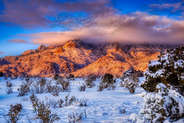 Snow in the Sandia Foothills