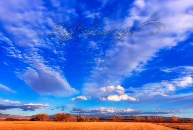 Bernardo: Field and Sky