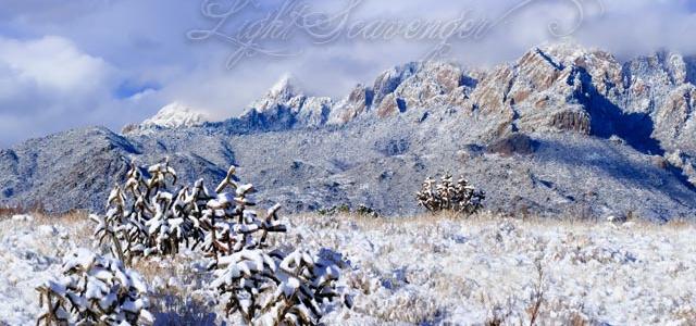 Snow in the Sandias