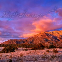Late Afternoon in the Sandia Foothills, Winter Edition