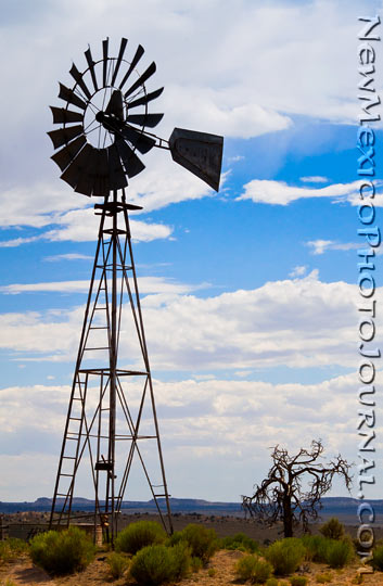 windmill and tree on the jicarilla apache reservation