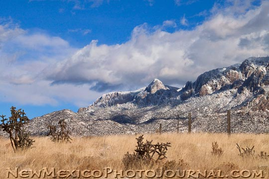 snow on the Sandia mountains, seen from the Bear Canyon trailhead