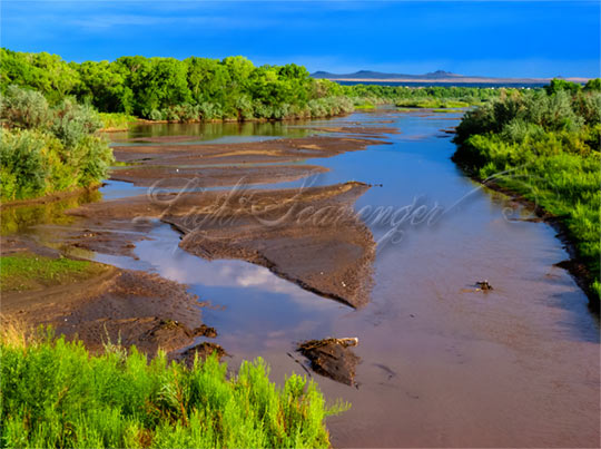 The Rio Grande in Summer