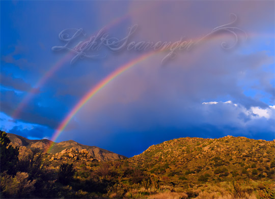 A double rainbow stretches over the Sandia foothills late one afternoon