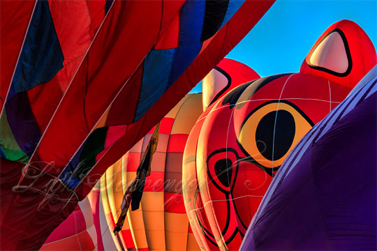 hot air balloons include a special shapes cat balloon