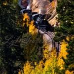 Cumbres and Toltec Steam Engine