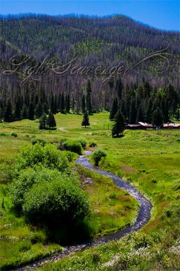 Las Conchas Meadow