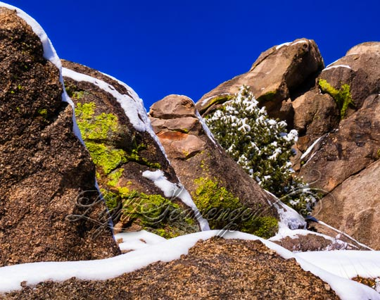 boulders in the Sandia foothills