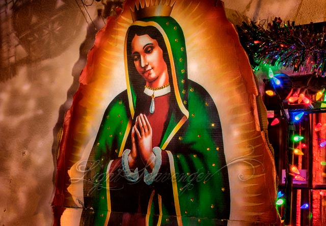 Guadalupe and Christmas Lights