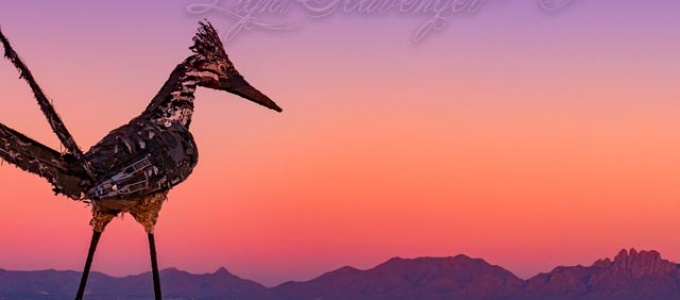 Recycled Roadrunner at Sunset