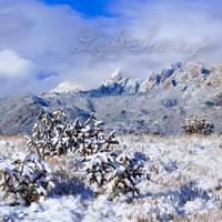 Snow in the Sandias