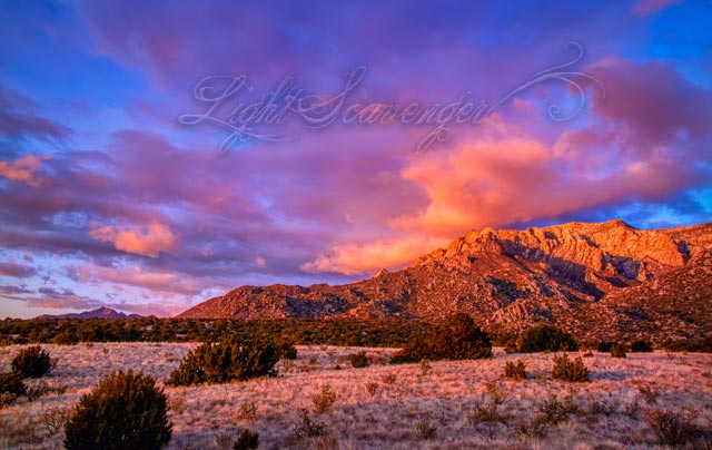 Late Afternoon in the Sandia Foothills in Winter