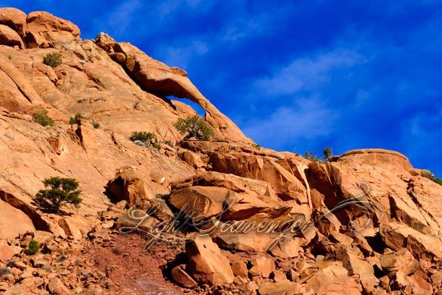 New Mexico's Delicate Arch