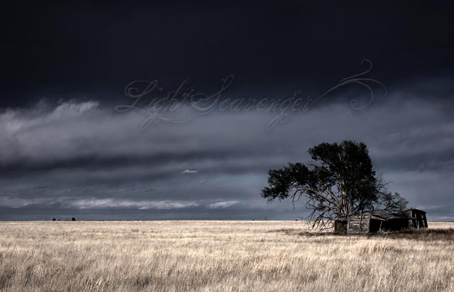 An abandoned, decrepit house on the eastern plains of New Mexico