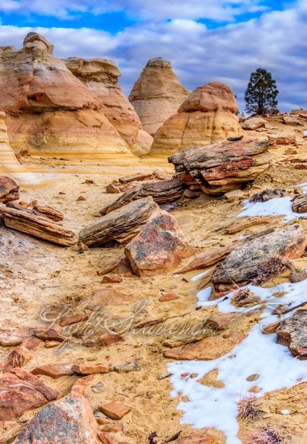 Ojito Wilderness Sandcastles