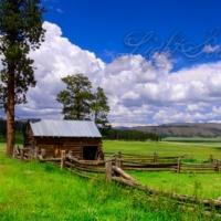 Valles Caldera: Barn and Corral