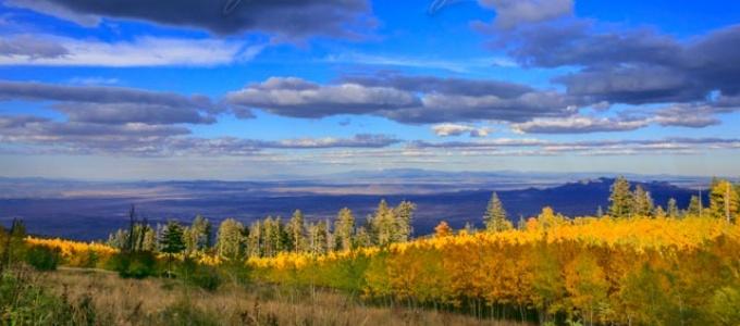Sandia Mountains: Fall Edition